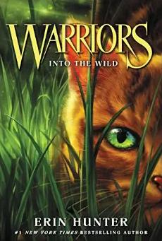 Warriors Cat Book series